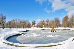 冻结喷泉在Schoenbrunn公园在维也纳 免版税库存照片