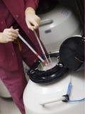 冻结存贮的胚胎学家胚胎 免版税图库摄影