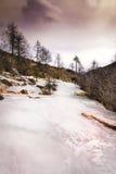 冻结的山坡 库存照片