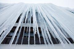 冻结的巨大的冰柱 库存图片
