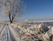 冻结的横向冬天 免版税图库摄影