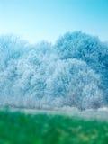 冻结的横向 图库摄影
