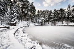 冻结的湖横向 免版税库存图片