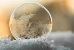 冻结的肥皂水泡影 免版税图库摄影