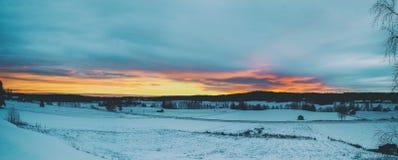 冻结的草横向日落水冬天 免版税库存照片