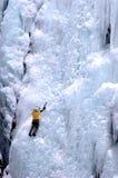 冻结的表面 图库摄影