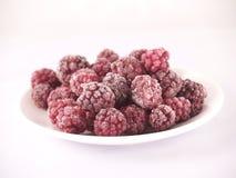 冻结的黑莓 免版税库存图片