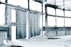 冻结的dors冬天 免版税图库摄影