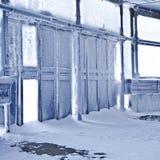 冻结的dors冬天 免版税库存照片