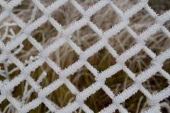 冻结范围 免版税库存照片