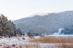冻Abant湖在Golcuk国家公园在博卢,土耳其 免版税图库摄影