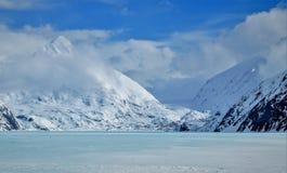 冻Portage Glacier湖在阿拉斯加 库存照片