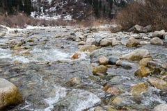 净水在河 库存图片