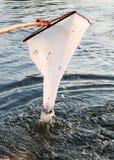 净滤网瓢鱼光 库存图片