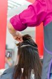 准备一切的发式专家剪一根长的棕色头发 免版税库存照片