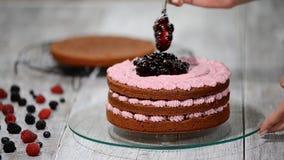 准备做巧克力蛋糕用莓果 妇女` s手装饰蛋糕 股票视频