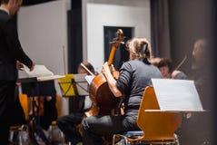 准备古典音乐乐队的无法认出的violoncelists 免版税库存图片