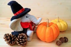 准备在万圣夜!!在巫术师服装的一个大象软的玩具有一个对的成熟南瓜和许多杉木锥体 免版税库存图片