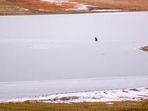 准备在冰的孤零零冰渔夫一个孔 库存图片