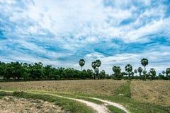 准备地面的农夫的领域等待米f 免版税库存图片