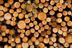 准备好堆击倒的树干被装载 免版税库存图片
