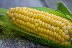 准备好新鲜的黄玉米 免版税库存照片