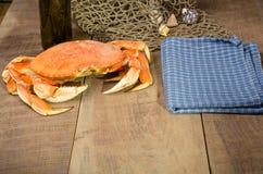 准备好的太平洋大蟹烹调 库存图片