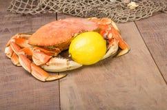 准备好的太平洋大蟹烹调 免版税库存图片
