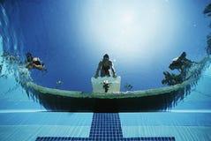 准备好的游泳者潜水在水池 库存图片