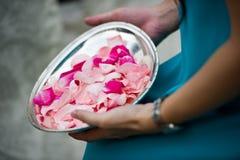 准备好花的瓣被扔 库存照片
