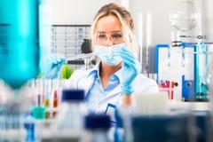 准备实验室设备的年轻可爱的女性科学家 免版税库存照片