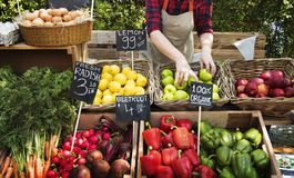 准备新鲜的农产品的蔬菜水果商 库存图片
