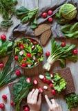 准备春天菜健康沙拉用萝卜, cucmber,皱叶甘蓝 库存图片