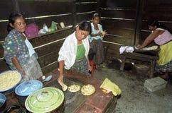 准备玉米粉薄烙饼的危地马拉印地安家庭 免版税库存图片