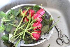 准备玫瑰花束 库存图片