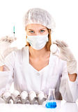 准备疫苗的妇女科学家使用注射器和鸡蛋 库存照片