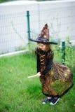 准备的万圣夜 邪恶的巫婆的衣服的女孩假装她在笤帚飞行 免版税库存照片