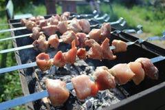 准备第一串夏天烤肉 免版税库存图片