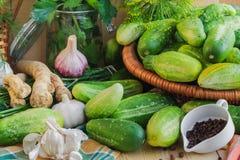 准备腌制的黄瓜各种各样的组分 免版税图库摄影