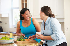 准备菜的饮食的两名超重妇女在厨房里 免版税图库摄影