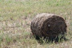 准备领域的一个干草堆 库存图片