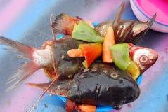 准备鱼汤的河鱼 库存照片