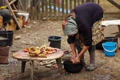 准备鸡的资深农村妇女室外 免版税库存图片
