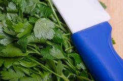 准备绿色新鲜的荷兰芹被砍 木切板 库存照片