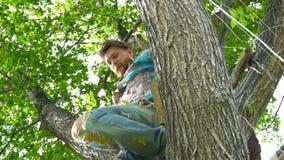 凉快的人在衬衣的30岁坐树 股票视频