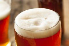 凉快的刷新的黑暗的琥珀色的啤酒 免版税库存图片