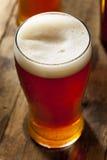 凉快的刷新的黑暗的琥珀色的啤酒 库存图片