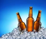 凉快的啤酒瓶。 免版税图库摄影