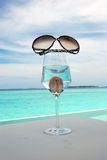 由海的太阳镜 免版税库存照片