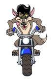 凉快的摩托车狼 库存图片